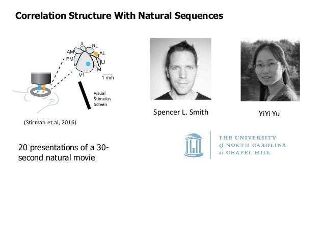 Correlation Structure With Natural Sequences Cell Assembly Order 3 4 5 6 Numberofunique cellassemblies x104 0 1 2 3 4 5 6 ...