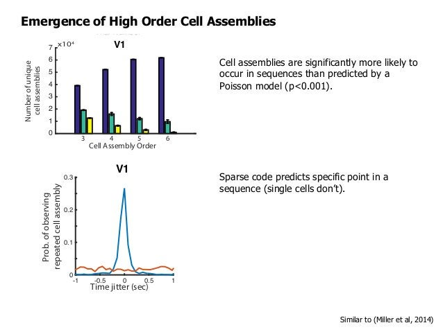 Emergence of High Order Cell Assemblies Cell Assembly Order 3 4 5 6 Numberofunique cellassemblies x104 0 1 2 3 4 5 6 7 Tri...