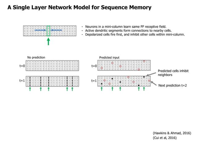A Single Layer Network Model for Sequence Memory - Neurons in a mini-column learn same FF receptive field. - Active dendri...