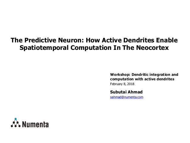 Workshop: Dendritic integration and computation with active dendrites February 8, 2018 Subutai Ahmad sahmad@numenta.com Th...