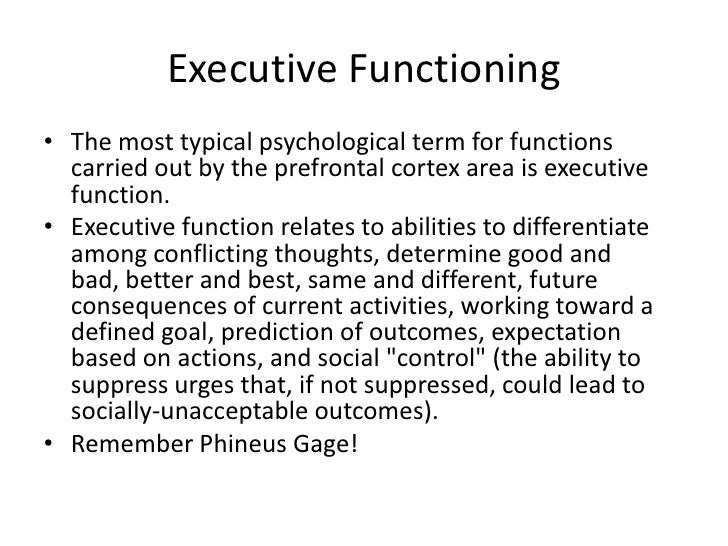 prefrontal cortex function psychology