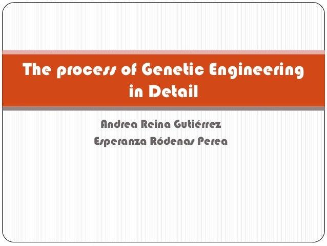 The process of Genetic Engineering             in Detail         Andrea Reina Gutiérrez        Esperanza Ródenas Perea