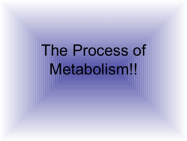 The Process of Metabolism!!