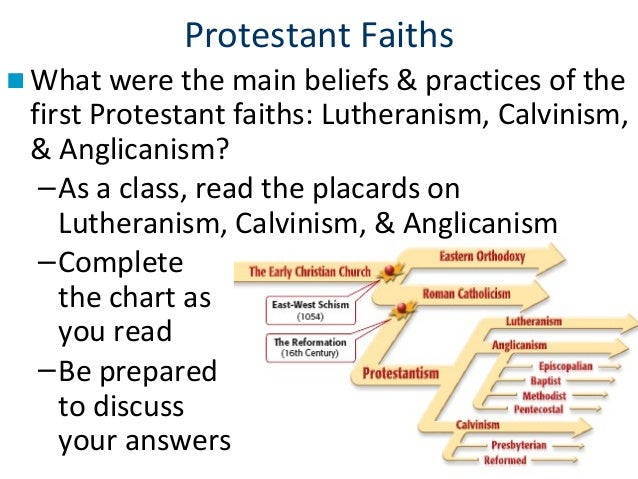 The protestant reformation