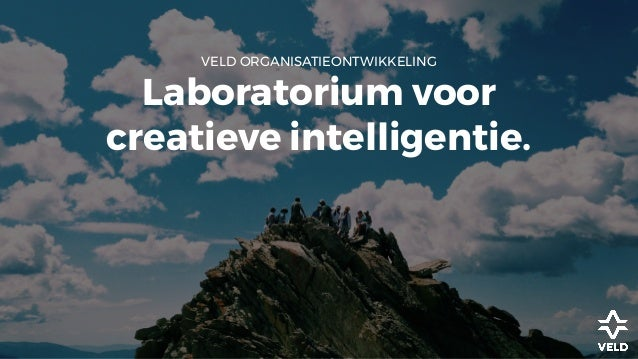 VELD ORGANISATIEONTWIKKELING Laboratorium voor creatieve intelligentie.