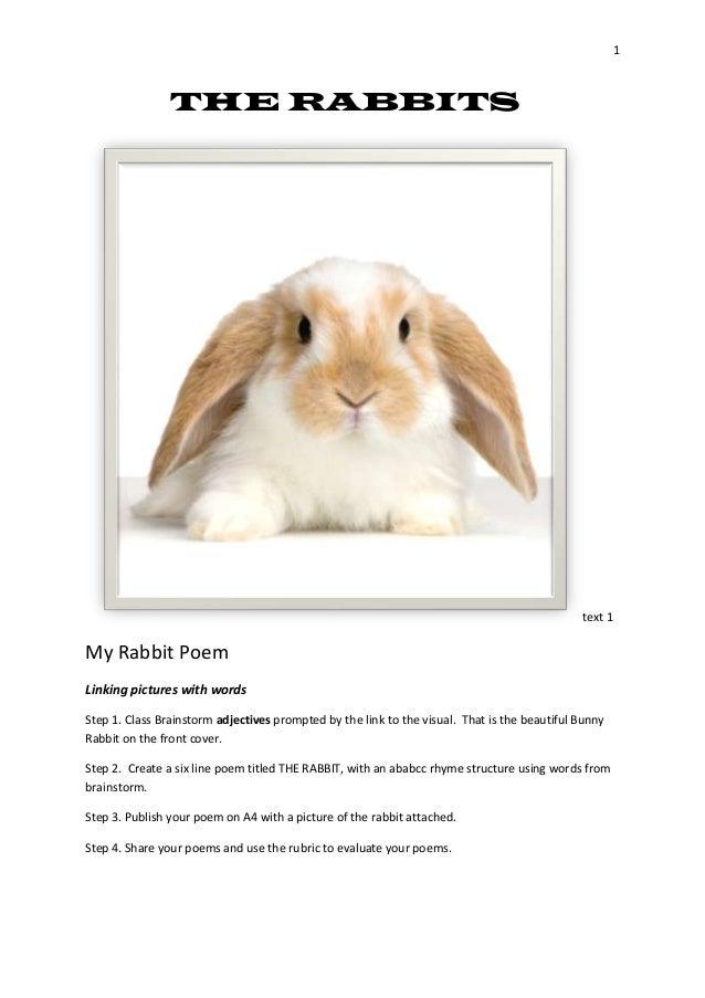 the rabbits slideshare