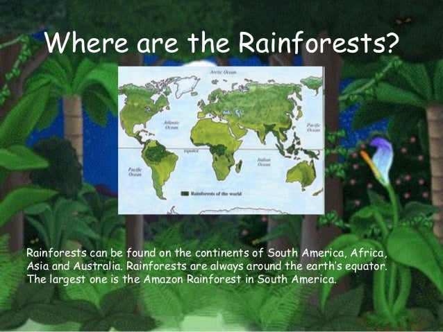 Major rainforest regions sciox Image collections