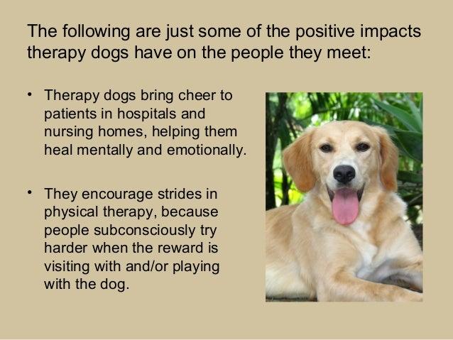 Dog Effect On Human Health