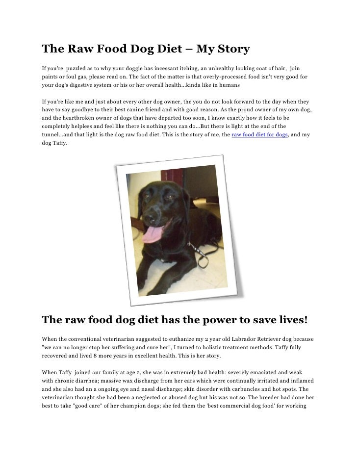 The raw food dog diet – my story
