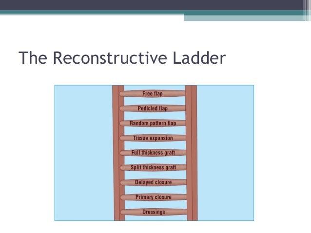 steroid ladder skin
