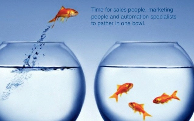 The Relationship Between The Sales Marketing Divide And