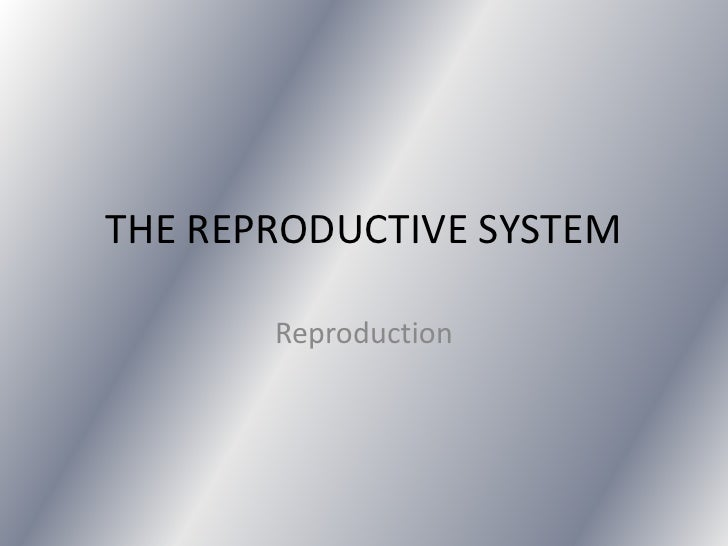 THE REPRODUCTIVE SYSTEM       Reproduction