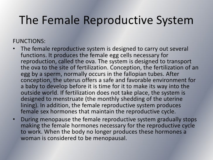 The reproductive system 22 the female reproductive ccuart Images