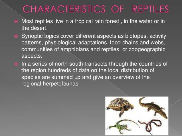 Most reptiles live in a tropical rain forest , in the water or in the desert.  Synoptic topics cover different aspects as...