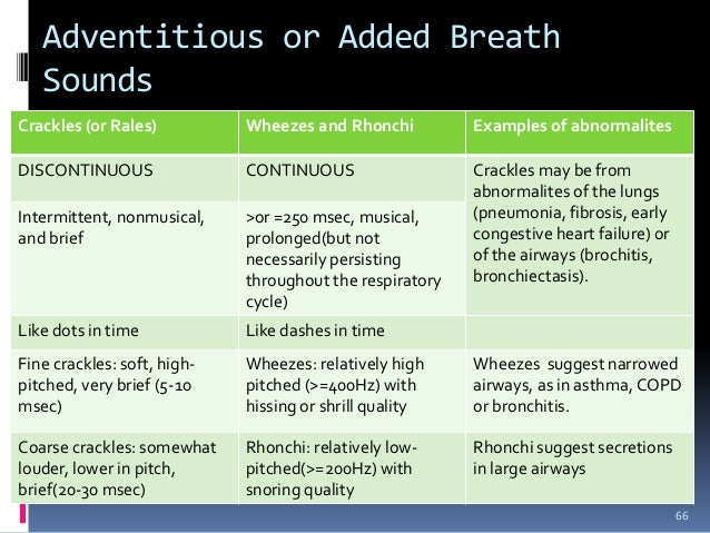 Bronchial breath sounds consolidating debt