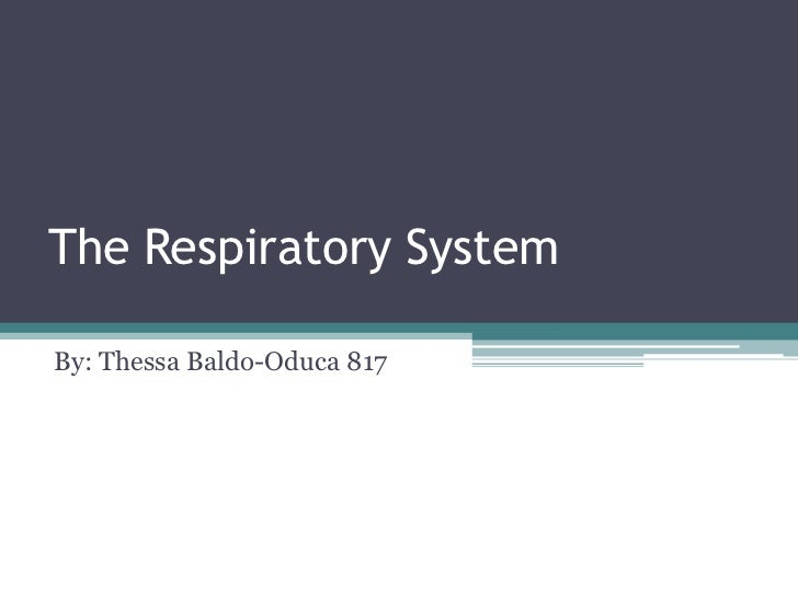 The Respiratory System<br />By: ThessaBaldo-Oduca 817<br />