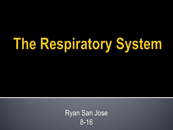 The Respiratory System<br />Ryan San Jose<br />8-16<br />