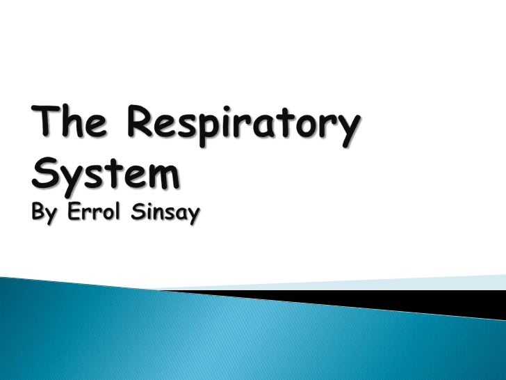 The Respiratory SystemBy Errol Sinsay<br />