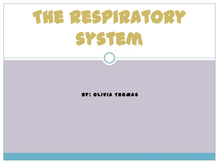 By: Olivia Thomas<br />The respiratory system <br />