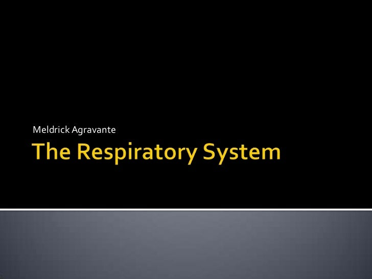 The Respiratory System<br />MeldrickAgravante<br />