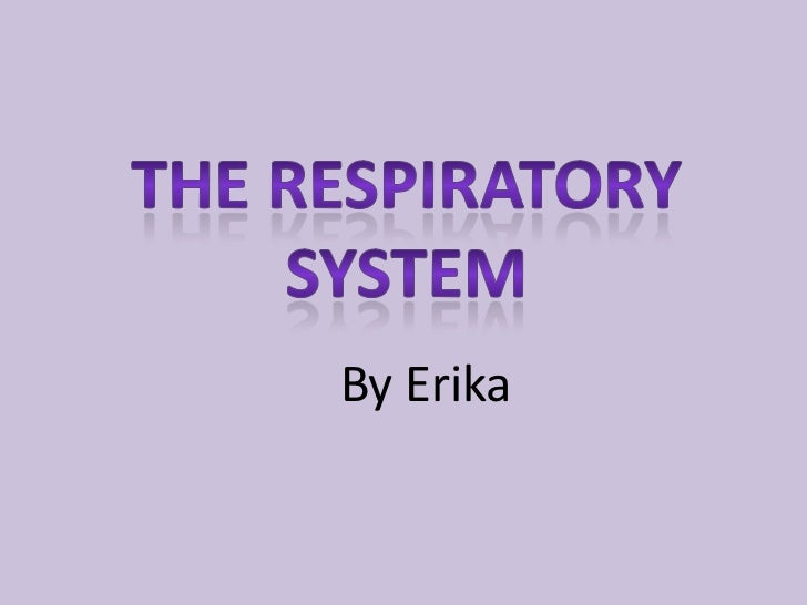 The Respiratory system<br />By Erika <br />