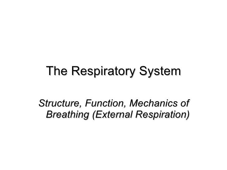 The Respiratory System Structure, Function, Mechanics of Breathing (External Respiration)
