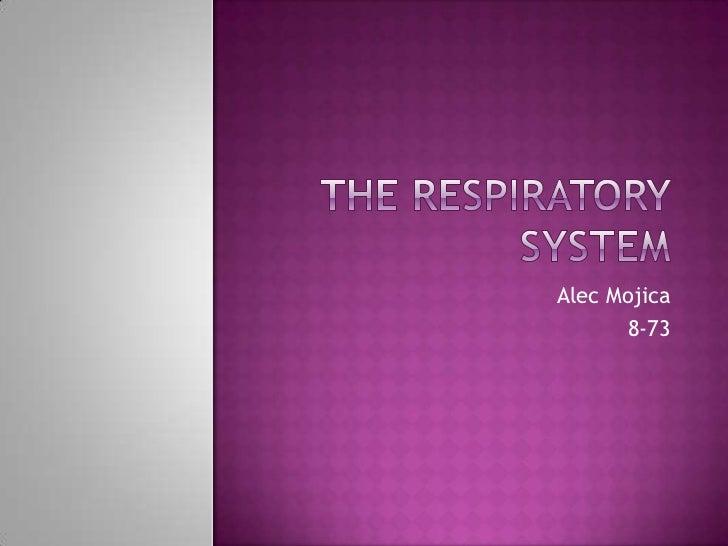 The Respiratory System<br />Alec Mojica <br />8-73<br />