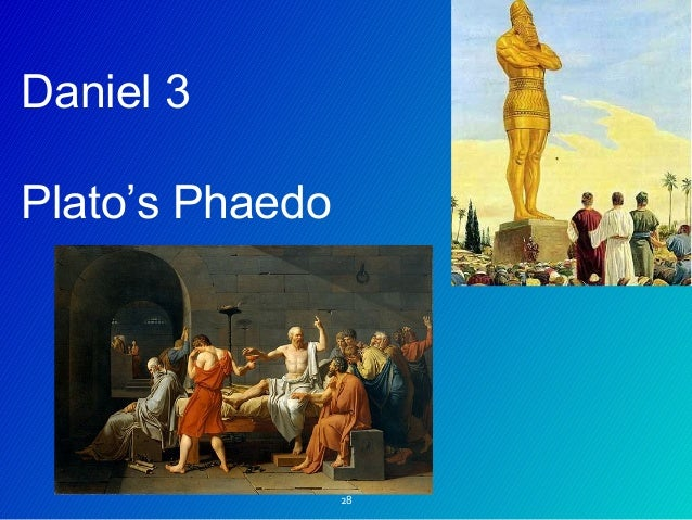 Essay/Term paper: Phaedo