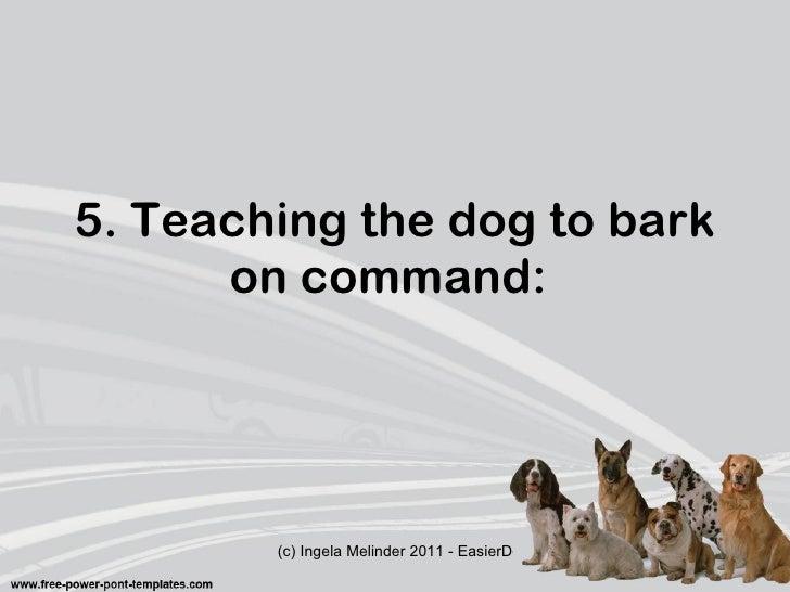 Risky barking