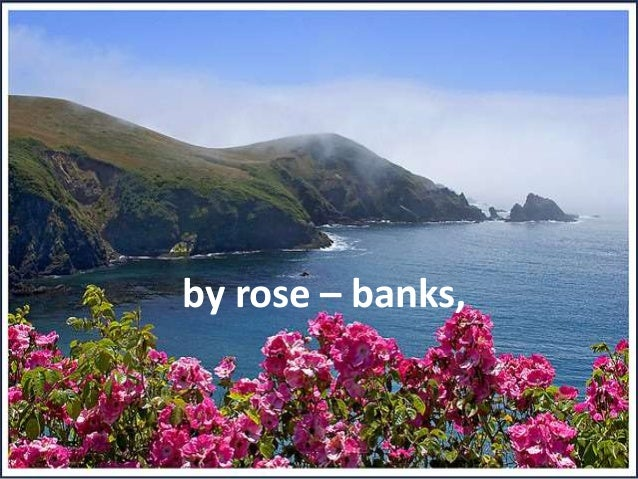 by rose – banks,