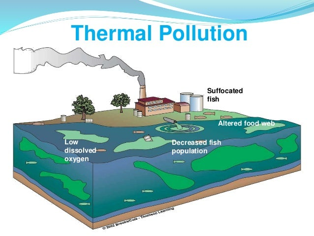 thermal pollution thermal pollution 4