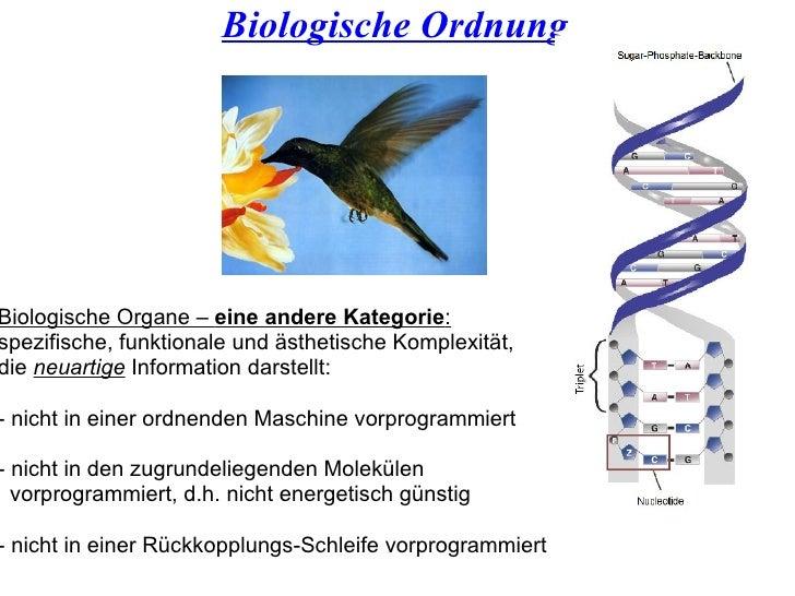 Biologische Ordnung Biologische Organe –  eine andere Kategorie :   spezifische, funktionale und ästhetische Komplexität, ...