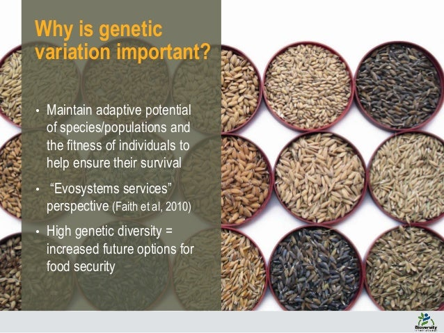 The Role Of Genetic Diversity For Building Resilience For