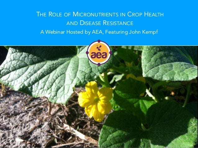 THE ROLE OF MICRONUTRIENTS IN CROP HEALTH AND DISEASE RESISTANCE A Webinar Hosted by AEA, Featuring John Kempf