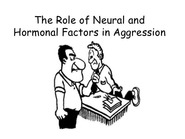 The Role of Neural andHormonal Factors in Aggression