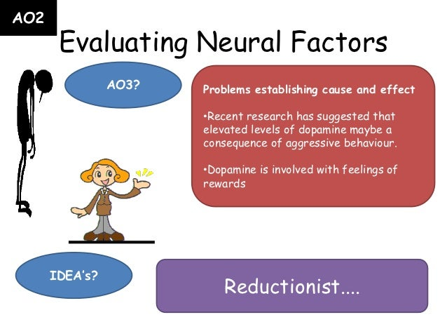 neural and hormonal factors in agression essay