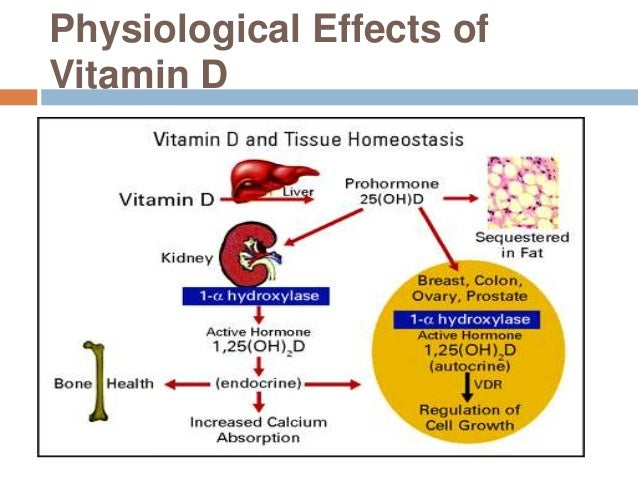 Vitamin D Calcitriol Side Effects