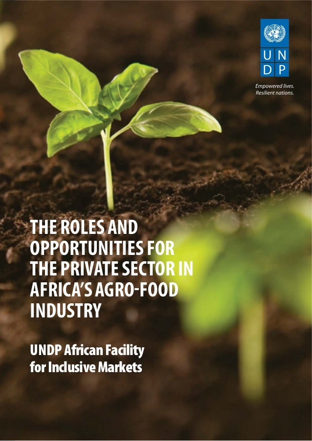 THEROLESAND OPPORTUNITIESFOR THEPRIVATESECTORIN AFRICA'SAGRO-FOOD INDUSTRY UNDPAfricanFacility forInclusiveMarkets