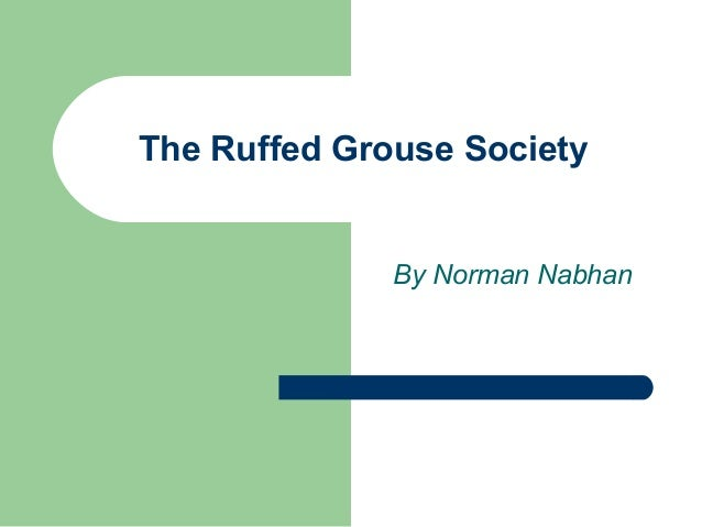 The Ruffed Grouse Society              By Norman Nabhan