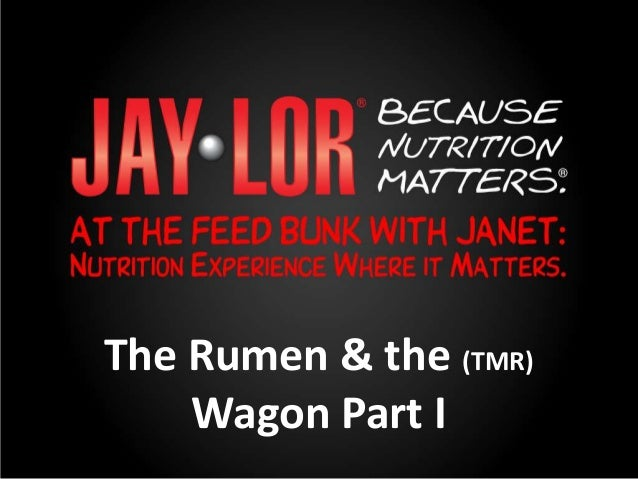 The Rumen & the (TMR) Wagon Part I