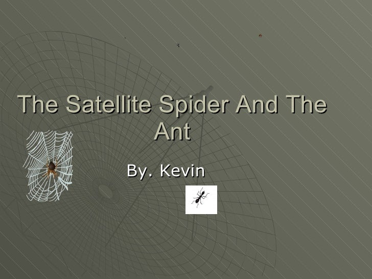 The Satellite Spider And The Ant By. Kevin