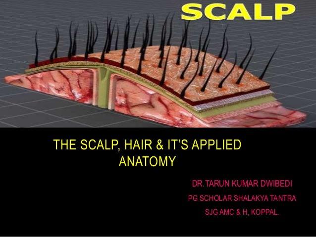 DR.TARUN KUMAR DWIBEDI PG SCHOLAR SHALAKYA TANTRA SJG AMC & H, KOPPAL. THE SCALP, HAIR & IT'S APPLIED ANATOMY
