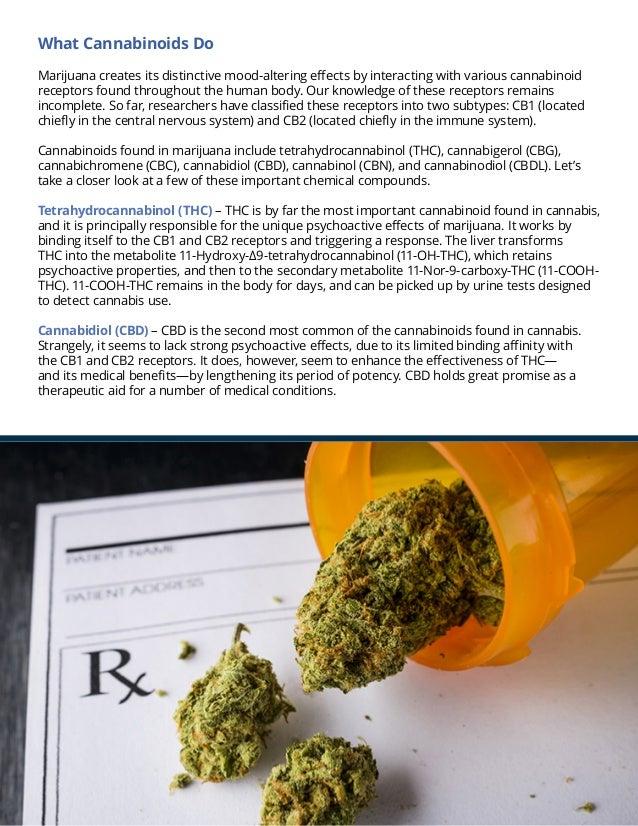 the science behind medical marijuana