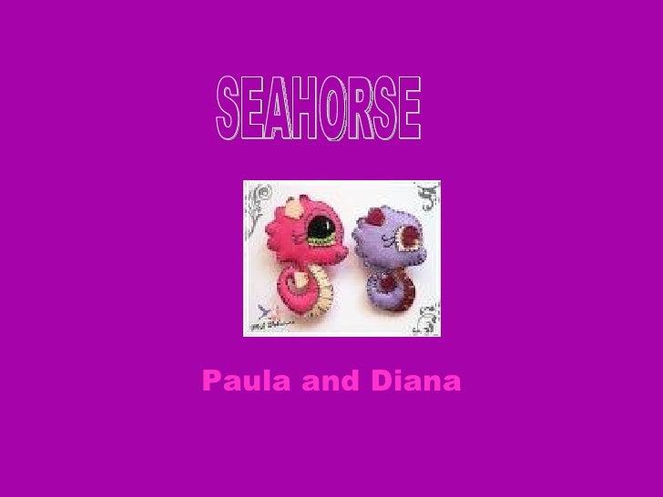 Paula and Diana  SEAHORSE