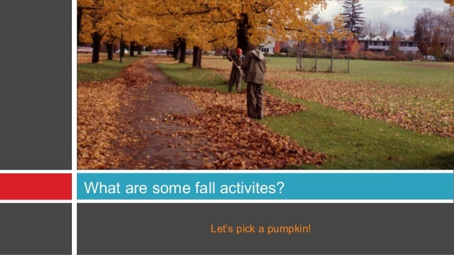 What are some fall activites?                  Let's pick a pumpkin!
