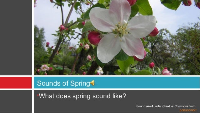 Sounds of SpringWhat does spring sound like?                               Sound used under Creative Commons from        ...