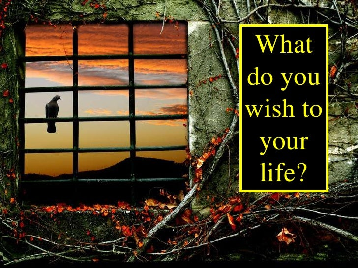 What do you wish to  your  life?