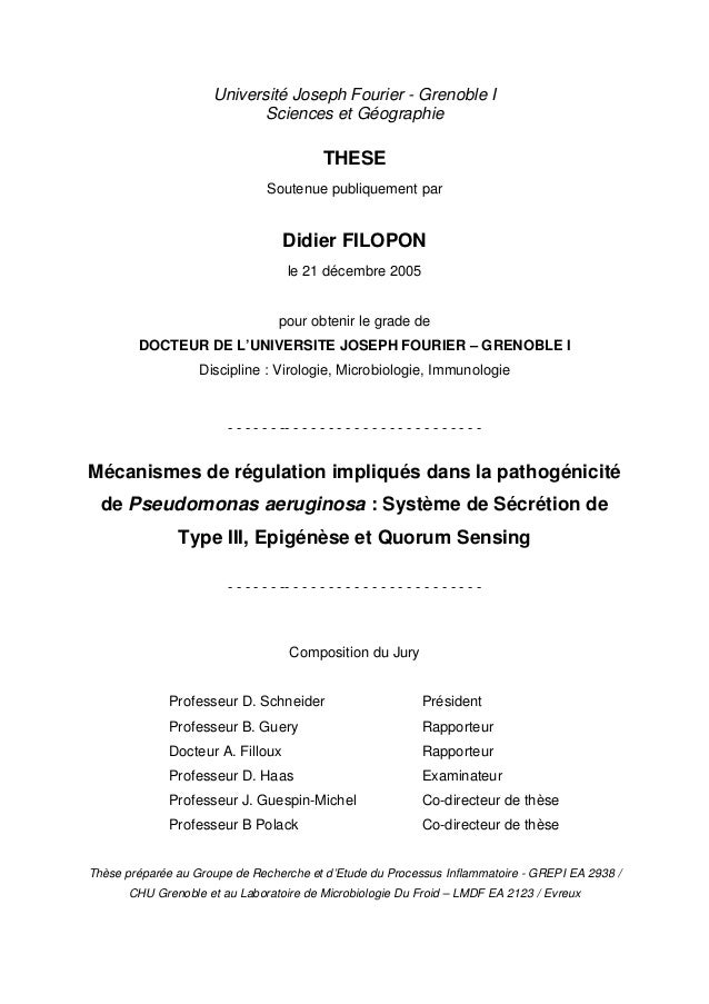 Université Joseph Fourier - Grenoble I Sciences et Géographie THESE Soutenue publiquement par Didier FILOPON le 21 décembr...