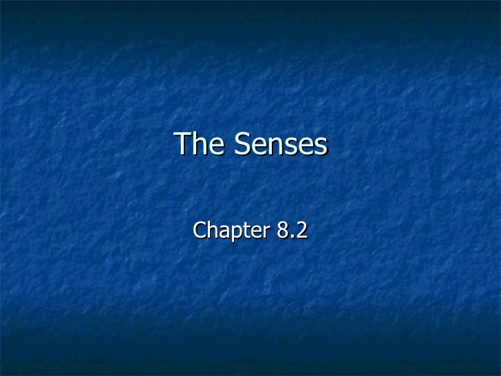 The Senses Chapter 8.2