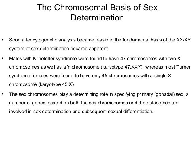 sex chromosomes anomalies in humans